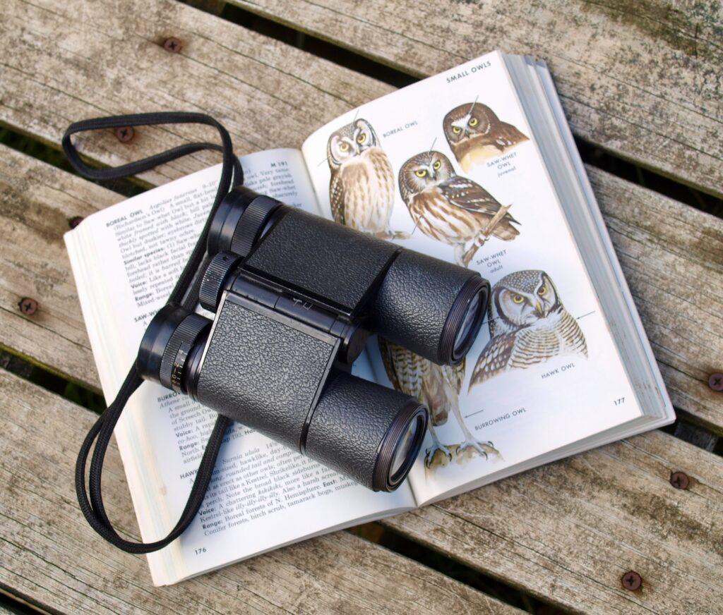 Binoculars for bird watching outdoor activities